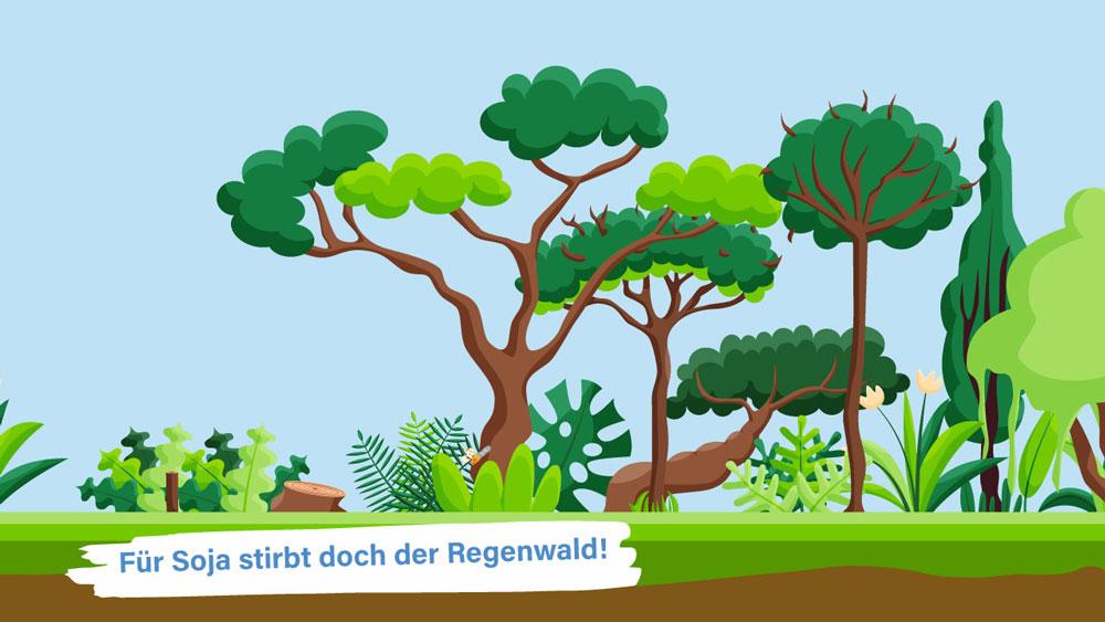 Sojabohne zerstört den Regenwald